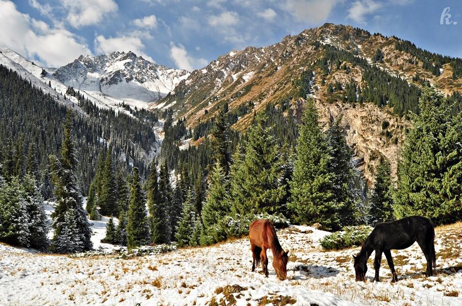 Krajobraz Kirgistanu - zdjęcia z podróży