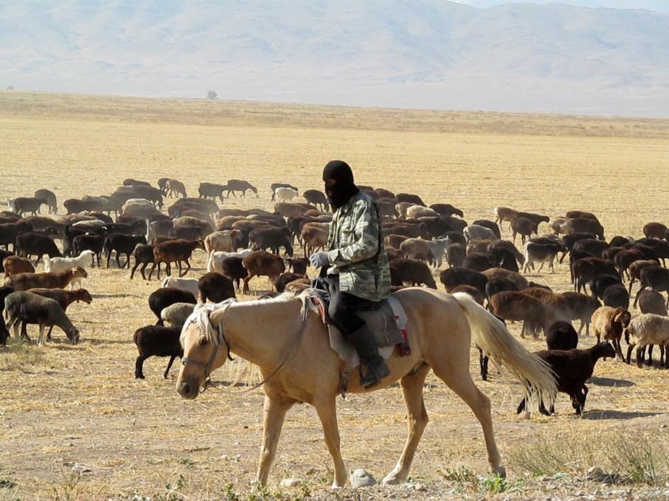 Kazachstan - człowiek stepu