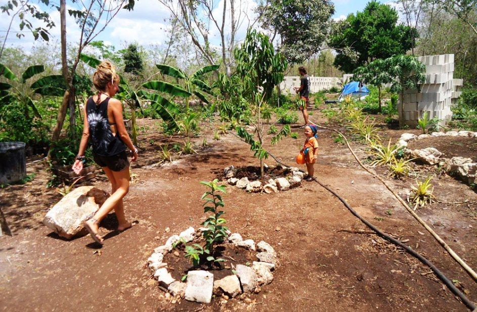 Na eko farmie w Meksyku