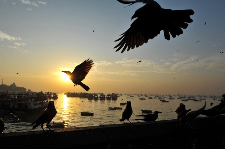 Wschód słońca w Mumbaju