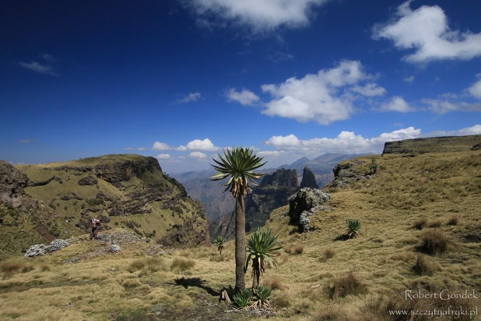 Góry Semien w Etiopii