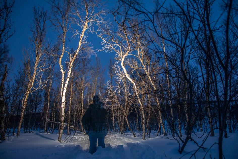 Dolina w Finlandii - podróż przez Laponię