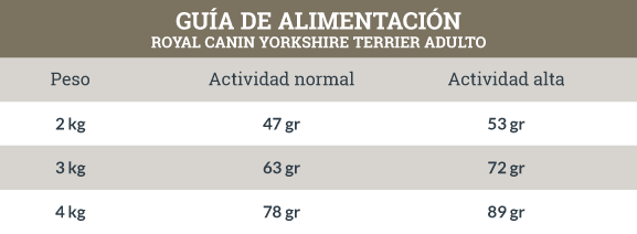 Guía de Alimentación Royal Canin Yorkshire Terrier Adulto
