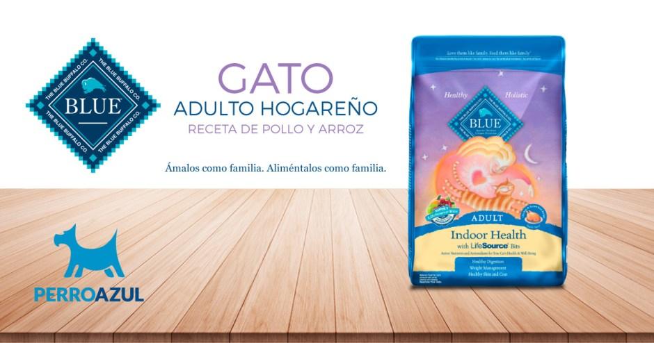 Blue Buffalo Gato Adulto Hogareño Receta de Pollo y Arroz
