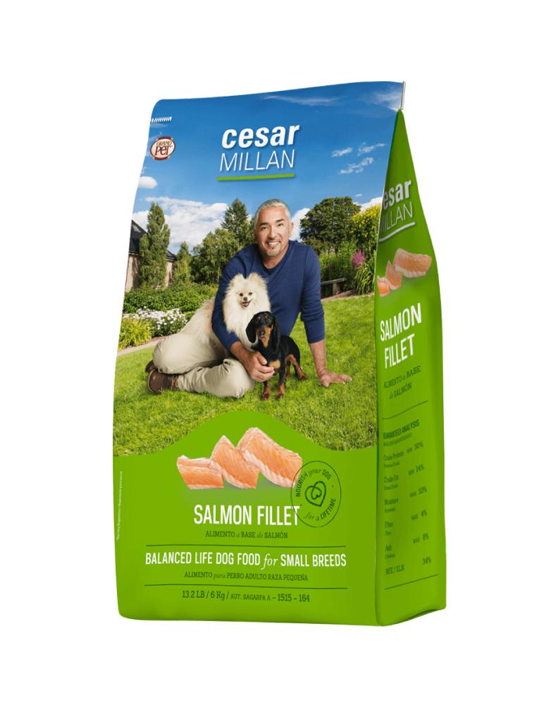 César Millán Adulto Razas Pequeñas Filete de Salmón
