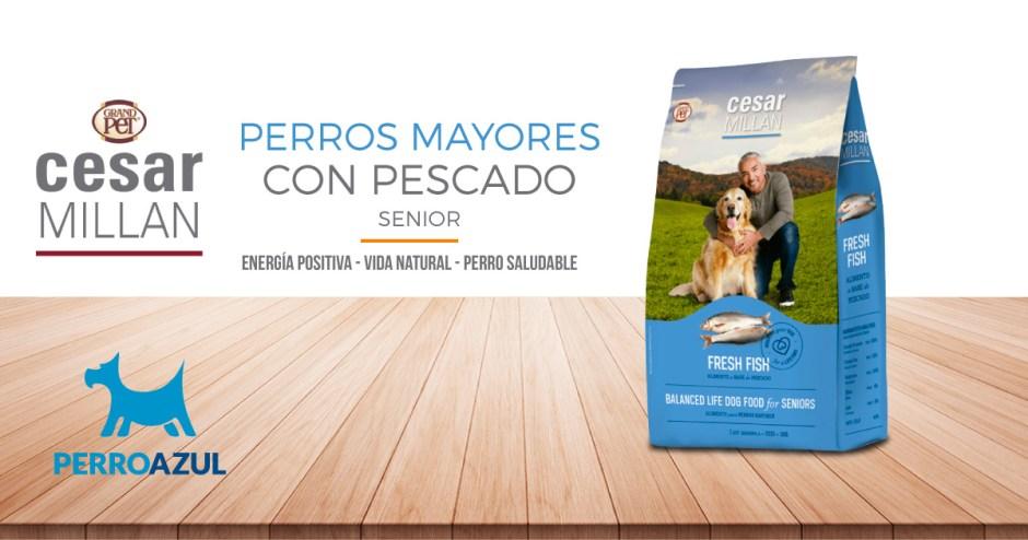 César Millán Perros Mayores con Pescado