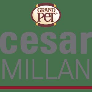 César Milllán