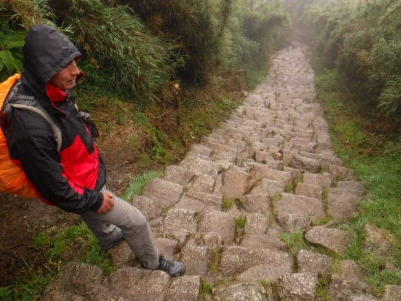 Inca Trail Steps in the Rain