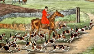 Evolución del perro a lo largo de la historia