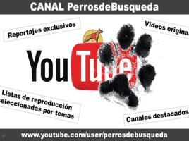 "alt=""Canal PerrosdeBusqueda Youtube"""