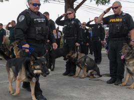 """alt=""""perro policia Nero homenaje cáncer"""""""