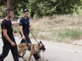 """alt=""""unidad canina Policía Nacional registra finca en Cuenca"""""""