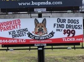 Alquiler de perros detectores de drogas