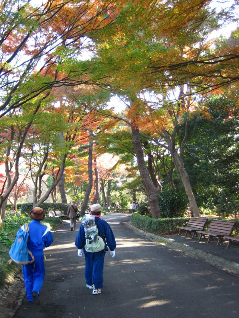 Un paseo por los jardines del este del Palacio de Tokio