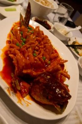 Fotos de la semana Nº 11, marzo 2012: gastronomía del mundo