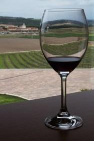 Copa de vino y viñedos en las bodegas Viña Mayor, Quintanilla de Onésimo, España