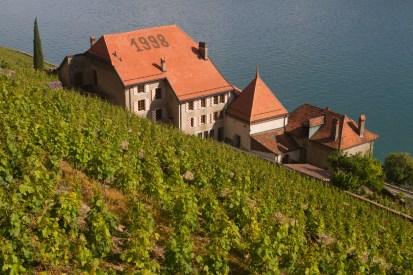 Fotos de la semana Nº 19, 2013: las terrazas de viñedos de Lavaux