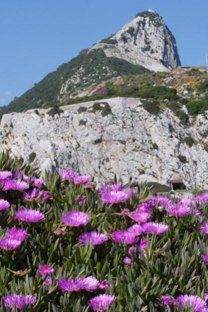 Fotos de la semana Nº 24, 2013: Gibraltar, a un paso de África