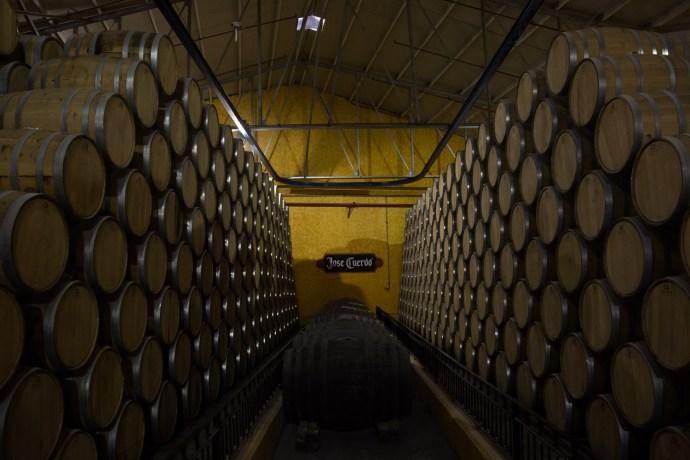 Barriles de tequila José Cuervo, Tequila, México