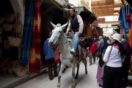 Transporte en burro en la medina de Fez, Marruecos