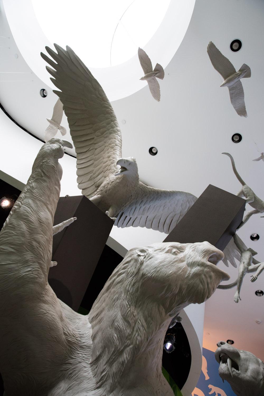 """Sala """"El gran intercambio"""" en el Biomuseo de Panamá"""