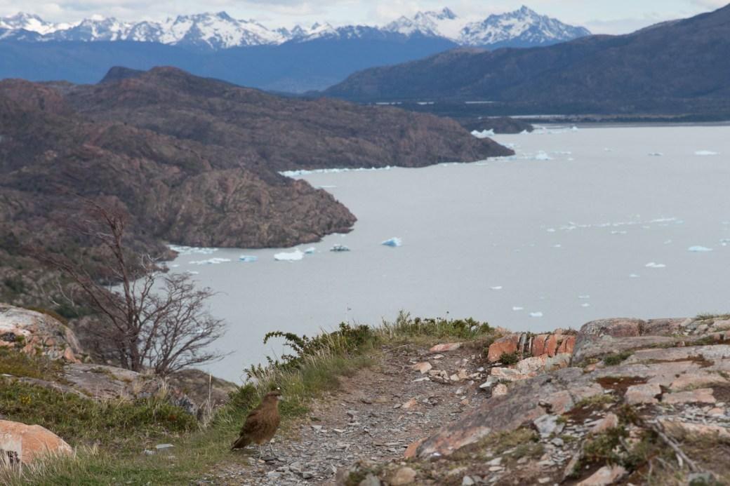 Punto intermedio entre Paine Grande y Grey, Torres del Paine, Chile