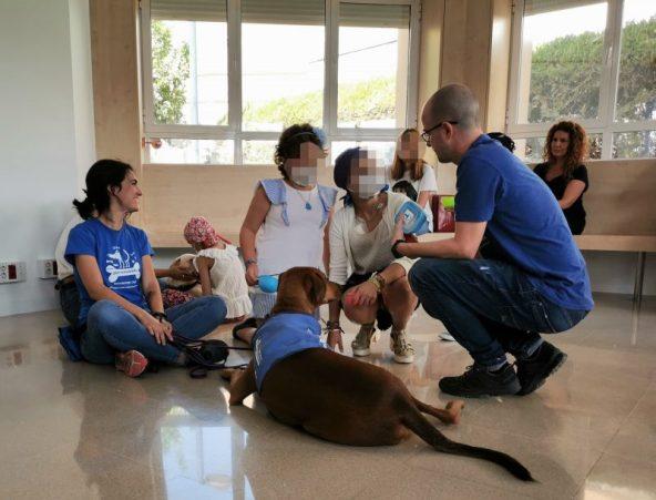 Sesión piloto Terapia Asistida con Perros Hospital Virgen del Rocío de Sevilla