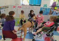 Educación Asistida con Perros - CEIP Miguel de Cervantes Lopera Perruneando