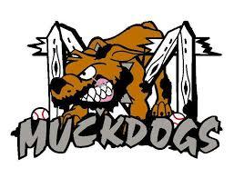 muckdogs logo
