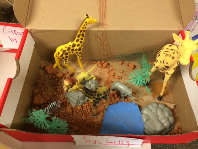 Diorama Habitat Completes Weeks Of Research For First