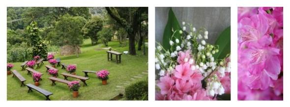 Collage azaleas