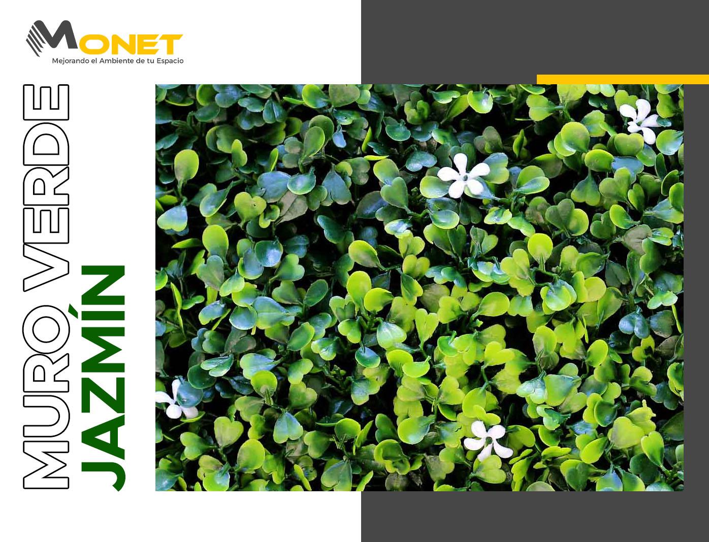 Muro Verde Jazmín proveedores mexico