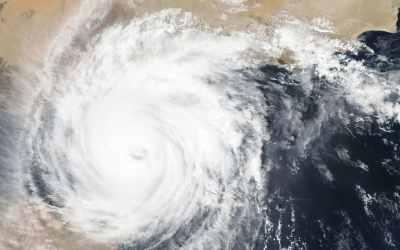 پاکسازی پس از گردباد در شهر بَری