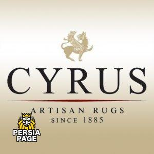 Cyrus Artisan Rugs Bloomington, MN