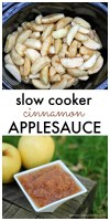 Super simple Cinnamon Applesauce made in the slow cooker!   Persnickety Plates