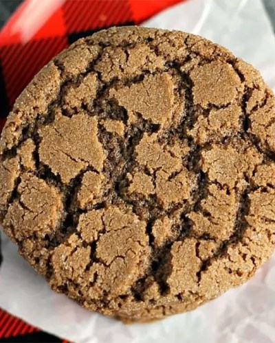 closeup of single chocolate crinkle cookie on buffalo plaid plate