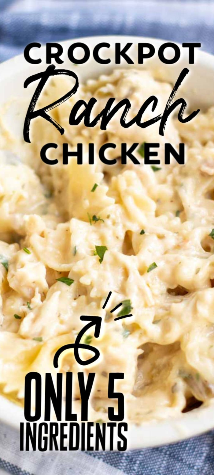 Five ingredient, very simple Slow Cooker Creamy Ranch Chicken can quickly be thrown together in the crock pot for a meal the whole family will love!   www.persnicketyplates.com