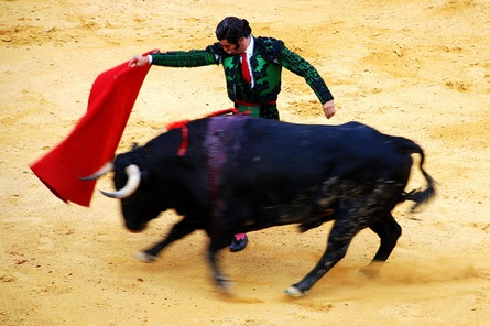 Image result for matador with charging bull pictures