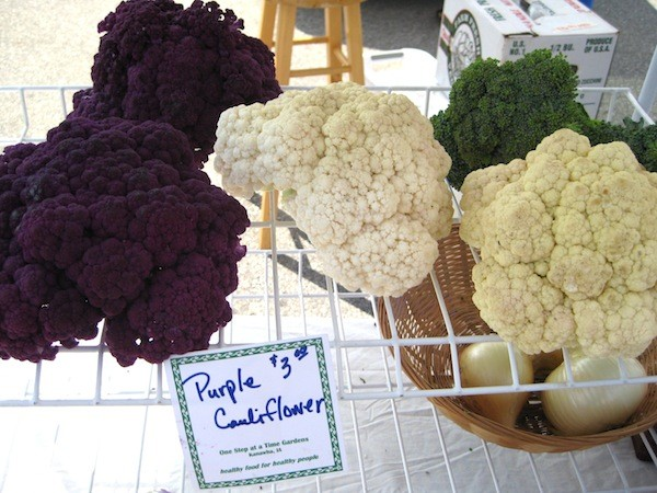 Purple versus white cauliflower