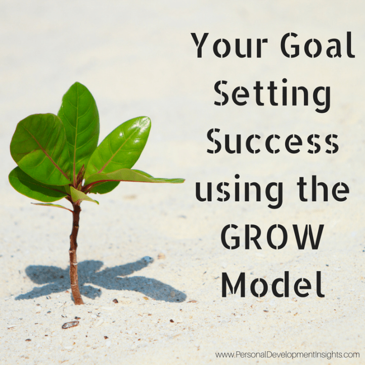 Goal Setting with the GROW Model