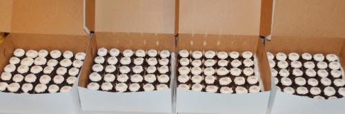 Cupcakes - CC306