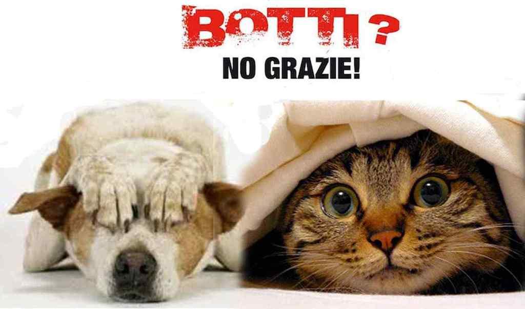Botti di Capodanno vietati in mezza Italia a difesa degli animali