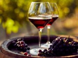 Il New York Times ha selezionato i 20 migliori vini autunnali sotto i 20 euro