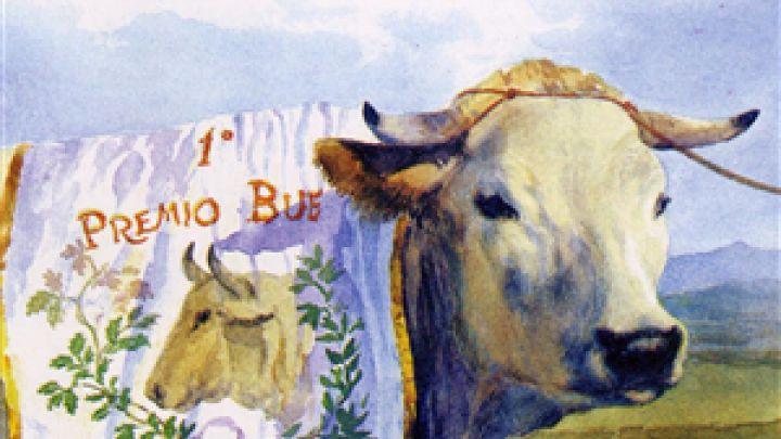 La Fiera del Bue Grasso Piemontese a Carrù, una tradizione d'inizio Novecento