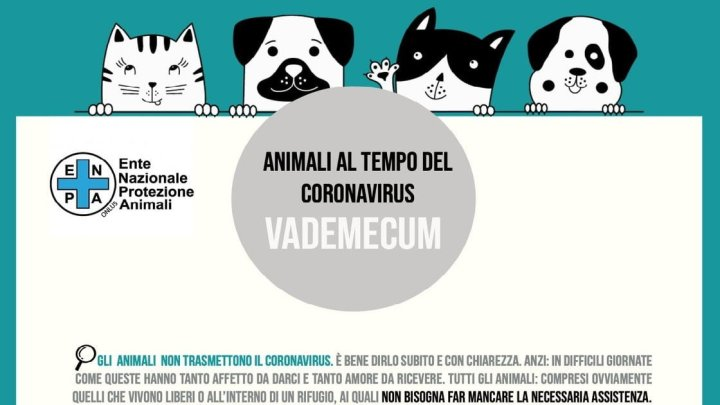 Vero o falso? Le bufale e le verità sugli animali ai tempi del Coronavirus