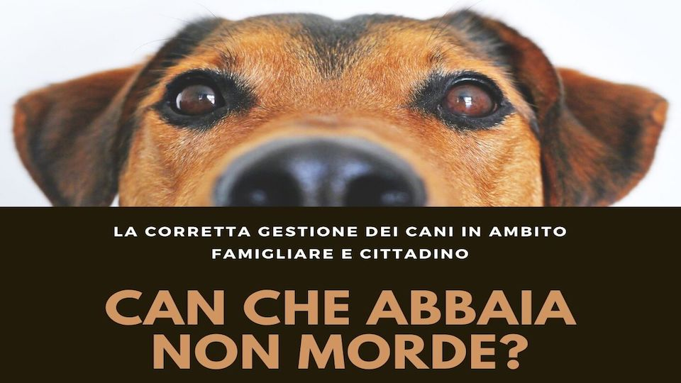 La corretta gestione dei cani in ambito famigliare e cittadino