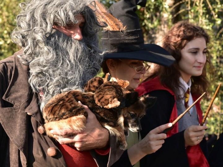 Una Giornata Fantastica al villaggio di Harry Potter