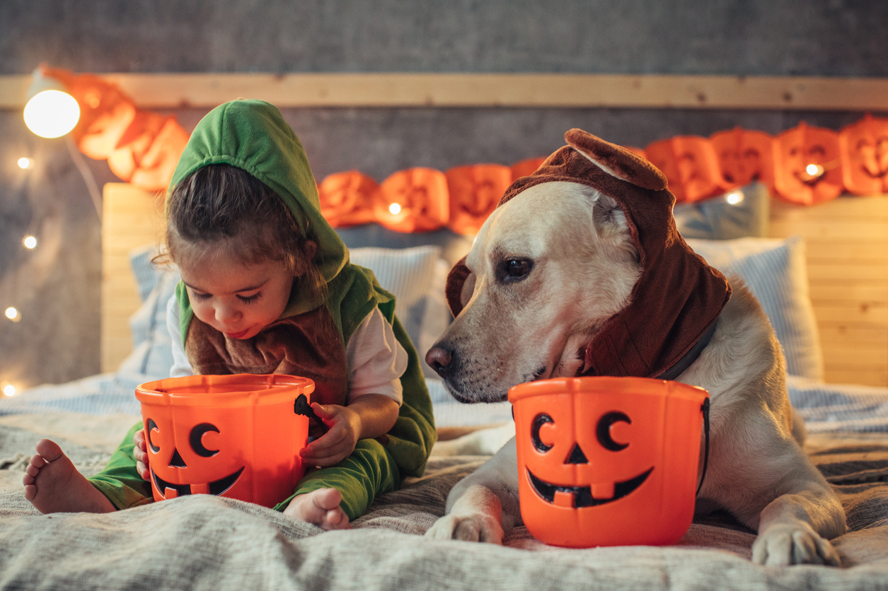 Healthy Halloween idea: if you littles can't read, you might tell them that their candy has expired.