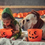 Halloween Candy: 12 Fun Ideas for a Healthier Holiday
