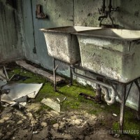 Flow Interruption - Moss takes over the basement of an abandoned house at a Colorado ghost town.